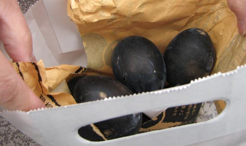 kuro tamago (black egg) from hakone, japan
