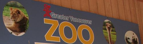 Local Tourist - Greater Vancouver Zoo