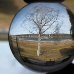 Crystal Ball: My 10 Bold Predictions for 2013