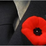 What's Up Wednesdays: Remembrance Day