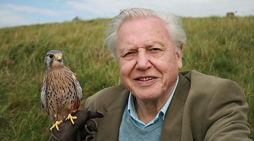 Sunday Snippet: Sir David Attenborough