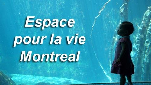 Espace pour la vie Montreal